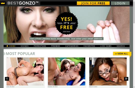 bestgonzo.com