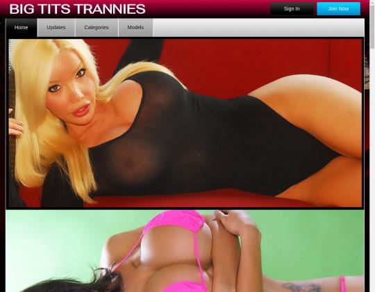 big tits trannies